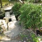 Hochzeitsbrücke im jap. Garten