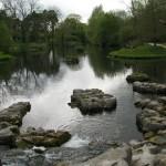 St. Fiachras Garden